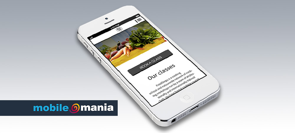 mobile-websites-panel-1